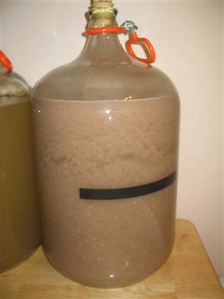 CocoNana Fermentation